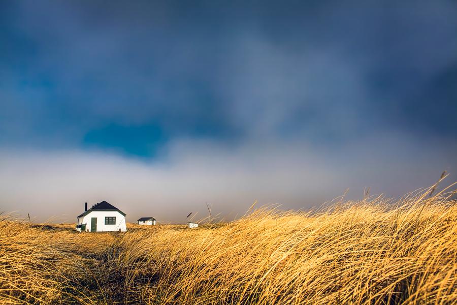 Häuser im Dünengras (Skallingen)