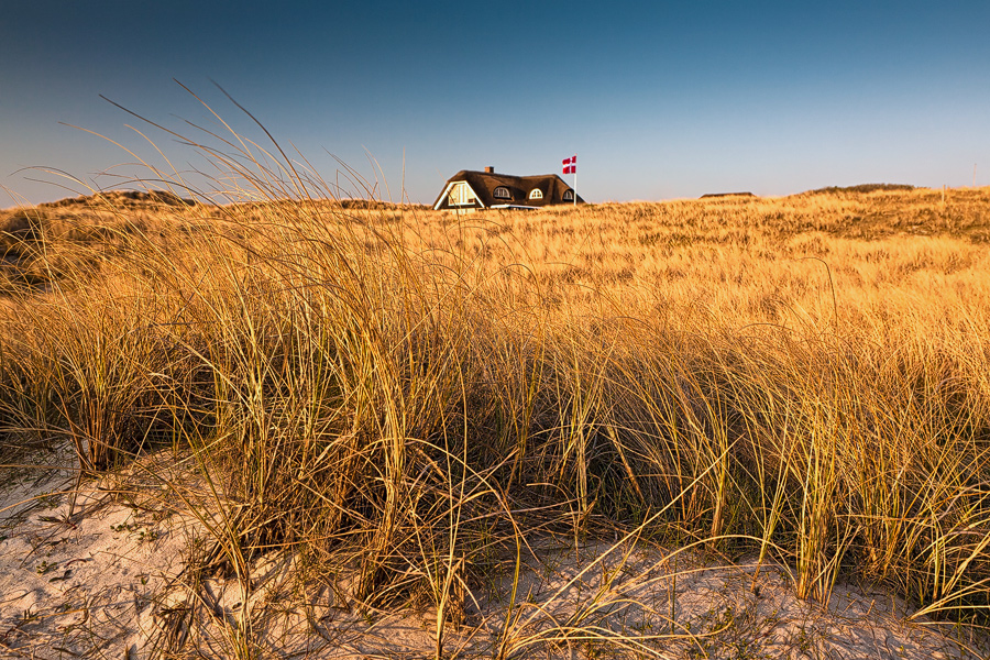Traumlage in den Dünen (Jütland / Dänemark)