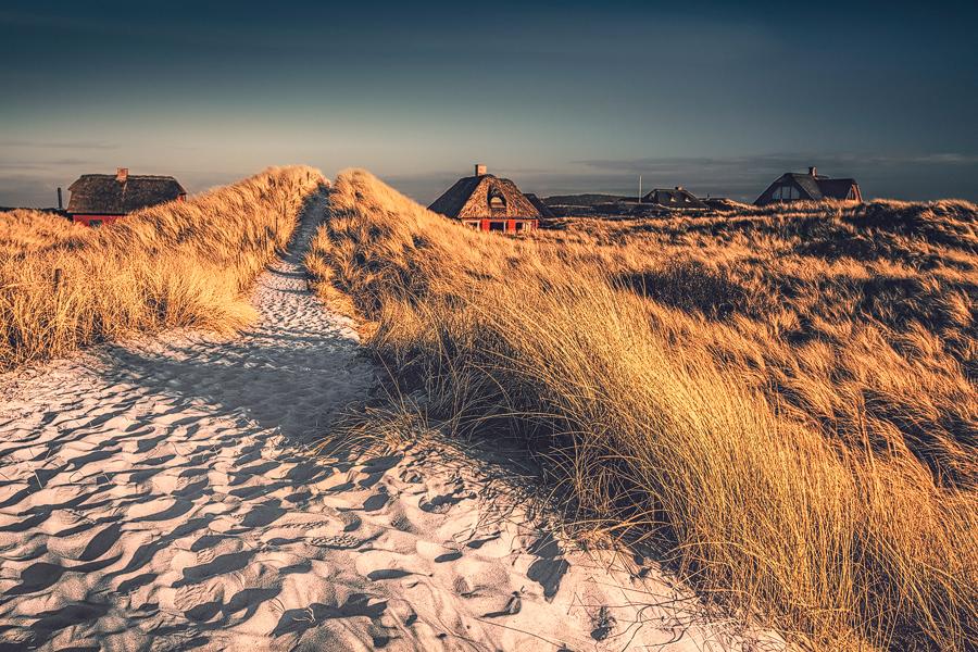 Dünenpfad (Henne Strand)