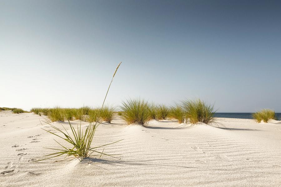 Strandfeeling (Ellenbogen / Sylt)