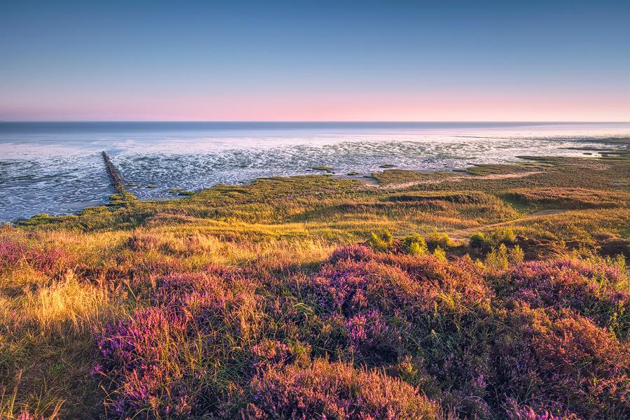 Am Morsumer Kliff (Sylt)